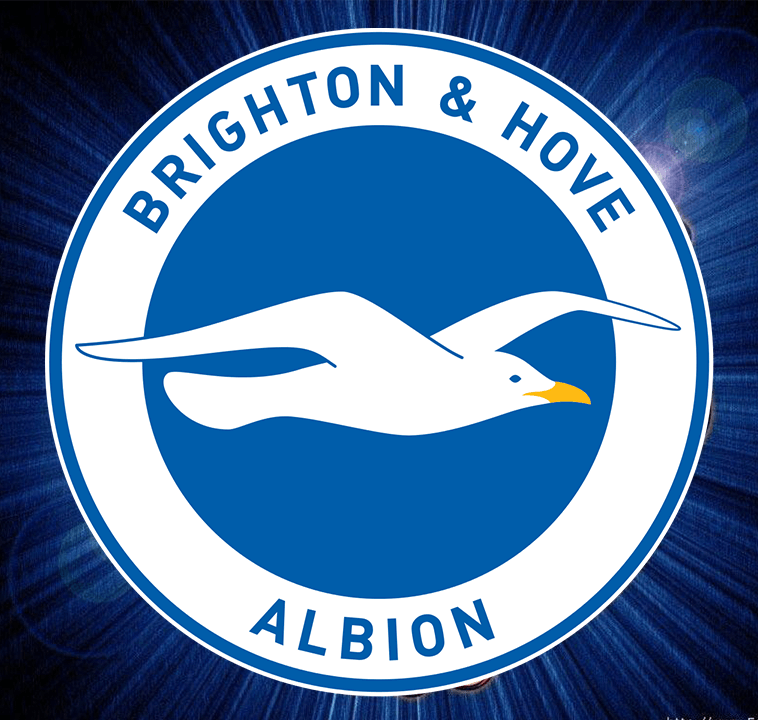 Brighton Hove Albion - Ethiopian's #1 Favorite English Premier League Football Club