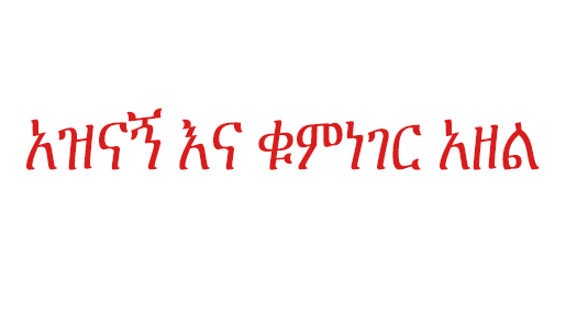 aaa - The Most Repeated  Words in Ethiopian Radio Shows
