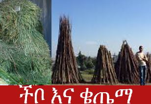 chebo and qetyma - Things to Do During The Ethiopian New Year