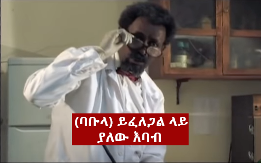 Babula - The Most Unforgettable non human characters in Ethiopian Movie