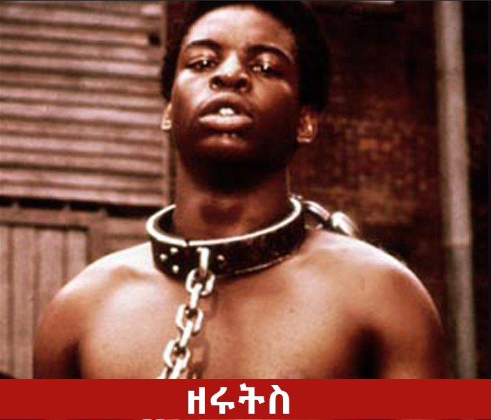 Ze ruts - The Best Series Movies on Tv in Ethiopia