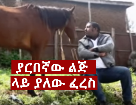 yarbegnaw - The Most Unforgettable non human characters in Ethiopian Movie