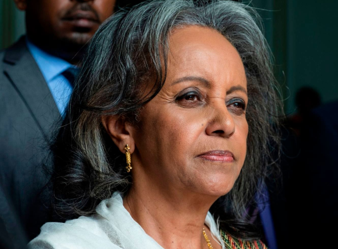 Sahlework Zewde - The Women Who Inspires You in Life