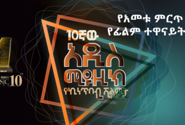 Tenth addis music award best actress 370x250 - The best actress of the year, 2011 E.C